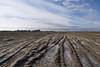 frozen field (Jeroen Hillenga) Tags: bevroren field akker soil ijs groningen hogeland landscape landschap platteland countryside farmland netherlands nederland