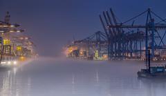 Nebel am Burchardkai (fotoerdmann) Tags: kran canon6dmark2 fotoerdmann h industrie outdoor flüsse elbe schiffe germany hamburg nebel fotoerdmannfog
