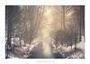 Pastoral (Amar Sood) Tags: amarsoodphotocom amarsoodphotography fuji fujinon fujifilm fujixt2 xt2 xf1855mm landscape snow stream winter breath taking landscapes