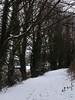 20180318-140641 (aderixon) Tags: naturelandscapehill natureplanttree natureweathersnow transportpath pontypridd midglamorgan walesuk nature snow weather