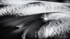 Waves and a small Tree... (Ody on the mount) Tags: abstrakt anlässe bäume dolomiten em5 fototour italien omd olympus pflanzen schnee schneeschuhtour sennes strukturen südtirol urlaub winter bw monochrome sw
