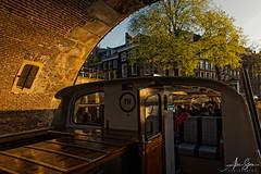 The Herengracht Canal (Amsterdam, Holland 2015) (Alex Stoen) Tags: 1dx alexstoen alexstoenphotography amsterdam bridge canal canon canoneos1dx ef2470mmf28lusm flickr goldenhour holland sunset tour travel facebook