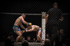 UKFC 6  (29) (R.J.Boyd) Tags: ukfc mma mixed martial arts fightimg combat contacty sport people preston guild hall action candid