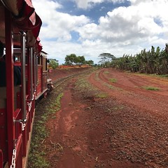 Plantation Train (colonelchi) Tags: iphone 7 iphone7 iphone7plus apple phone smartphone trip vacation family wedding weekend tropical island familyvacation familywedding hawaii hawaiianisland hawaiianislands oahu northshore winter wintertrip islandgetaway getaway relaxation relax beach shore green tropicalisland islands unitedstates unitedstatesofamerica