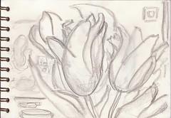 Frühling verheißen die Tulpen und Rückkehr der Gesundheit (raumoberbayern) Tags: sketchbook skizzenbuch sketch robbbilder drawing zeichnung stilleben naturemorte livingroom wohnzimmer graphite grafit dina5 schrank flaschen bottles boutteile carnetdecroquis
