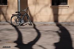 Una bicicleta. (AviAntonio) Tags: façana ombres llums bicicleta fachada sombras luces