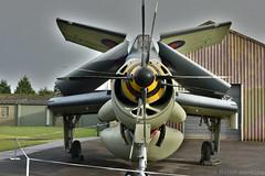 Fairey Gannet AEW3 (Bri_J) Tags: yorkshireairmuseum elvington york northyorkshire uk yorkshire museum airmuseum aviationmuseum aircraft fairey gannet aew3 coldwar fleetairarm royalnavy carrieraircraft airborneearlywarning foldedwings