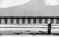 Abstract . . . Snowbound Railway Platform (Rookie Phil) Tags: outdoor daytime abstract lines geometric architecture railwayplatform platform station railwaystation railwaytracks railtracks roof roofpelmet pelmet snow snowing lyingsnow blizzard winter wintry patterns textures bw blackandwhite monochrome atmospheric d750 nikond750 2401200mmf40 enigmatic