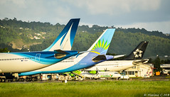 Airbus squad ! 😎 (Maxime C-M ✈) Tags: airplane travel colors exotic martinique caribbean paris frankfurt island mount discover aviation grass france europe beautiful passion