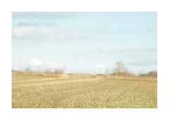 "im Frühling - Jupiter 9 f=85mm 1:2.0 (alex ""heimatland"") Tags: oberlausitz cunewalde krasnogorsk ленин площадь красная kmz юпитер jupiter 85mm lytarkino lzos jupiter9 юпитер9 outdoor analog foveon sd15 sigma cccp ussr sonnar zeiss"