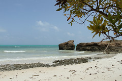 Ile Moucha (benoit871) Tags: moucha djibouti ile indien island mangrove mer merrouge muscha oncean paletuvier redsea republiquededjibouti rouge sable sand sea