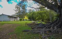 792 Mooral Creek Road, Wingham NSW