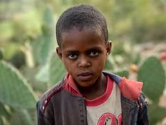 Tigray Boy (Rod Waddington) Tags: africa african afrique afrika äthiopien tigray boy child outdoor portrait people cactus fruit culture cultural ethiopia ethiopian ethnic etiopia ethnicity ethiopie etiopian
