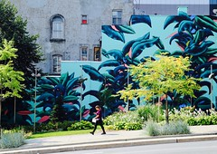 Modern Jungle (Alex L'aventurier,) Tags: montreal montréal quebec québec canada street rue candid colors couleurs walking marcher movement mouvement wall mur art murale mural person urban urbain ville city arbres trees composition