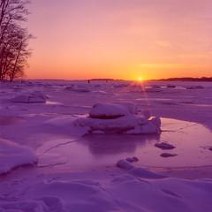 The Last Rays of Sun (elfsprite) Tags: lauttasaari helsinki hasselblad500cm kodak ektachrome 200vs film filmi sunset auringonlasku expiredfilm ice jää