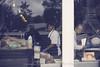 Window Work (uselessbay) Tags: 2017 atlanta epsonperfectionv600 fujisuperia100 georgia nikon people uselessbayphotography williamtalley f4 film nikonf4 streetphotography uselessbay working ngc