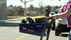 You drive (jcdriftwood) Tags: drive navigate cart petsmart street shoppingcenter pet push