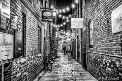 80/365 2018 Godstall Lane (crezzy1976) Tags: nikon d3300 nikkor1855 crezzy1976 photographybyneilcresswell photoaday outdoors chester cheshire architecture buildings bars nightphotography nighttime nightlife 365 365challenge2018 day80 godstalllane blackandwhite monochrome