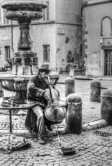 Note melanconiche - Spleen notes (Pablos55) Tags: piazza square suonatore player violoncello cello strada street melanconia spleen