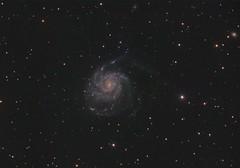 M101 - Pinwheel Galaxy (RGB) (DeepSkyDave) Tags: astrophotography astrofotografie astronomy astronomie night sky nacht himmel stars sterne deepsky cosmos kosmos natur nature long exposure langzeitbelichtung low light messier 106 pinwheel galaxy astrodon rgb filter