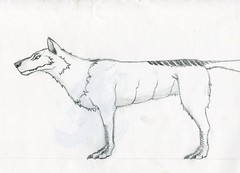sc0093 (Josh Beck 77) Tags: drawing doodle sketch starwars lothwolf scifi sciencefiction fantasycreature