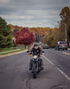 When life gets complicated... RIDE !!! (Just lovin' it) Tags: bike motorcycle ride harley biker