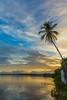 Good morning Flickr friends (alain_did) Tags: sun clouds water coconut reflets matin guyanefrancaise fransguyana saintlaurentmaroni hellosaintlau sky