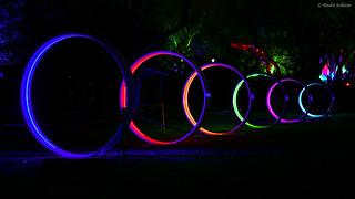 Circles of Light (2)
