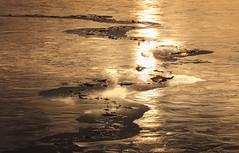 2458 (Keiichi T) Tags: ice 氷 canon light eos water 日本 lake リフレクション 水 朝 冬 6d morning 湖 reflection japan winter 光