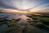 La Jolla Sunset (Mike Ver Sprill - Milky Way Mike) Tags: la jolla sunset nikon d810 1424 nikkor san diego california travel sunrise sun clouds long exposure beautiful scenic scenery tide pools pool algae algea rocks rock rocky water ocean seascape landscape nature sea reflections