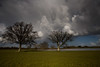 BeastfromtheEast2 (Robin M Morrison) Tags: flooded tree field river isle south somerset storm clouds
