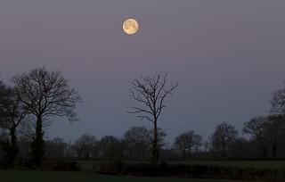 Coucher de super lune