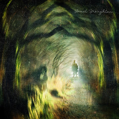 The Light At The End (Janet_Broughton) Tags: trees mysterious treetunnel dark moody figure