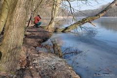 Der Fotograf macht Winterbilder (Sockenhummel) Tags: gefroren schlachtensee see winter lake baum ufer fotograf fuji x30 wald zehlendorf berlin