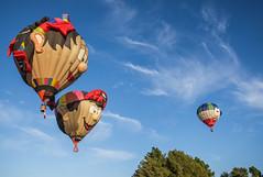 Hot Air Balloons (Kiwi-Steve) Tags: nz newzealand northisland nikon nikond7200 hotairballoon ballonsoverwaikato sky cloud flying waikato
