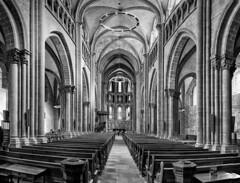 Cathédrale Saint-Pierre, Genève (Karl Le Gros) Tags: catédralesaintpierre genève switzerland xaviervonerlach 2018 church monument architecture cantondegenève cathedral panorama