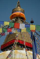 DSC_7679 (Wonderlane) Tags: wishgrantingstupa tibetan buddhist buddhism religious spiritual esoteric tantra lamdre sakya nepal kathmandu wonderlane boudhastupa chorten tibetanbuddhist shrine traditional tradition wishfulfilling white boudha stupa boudhanath holy relic marvelous temple nepalese blessing blessed jarungkashor jarungkashorstupa thegreatstupa jarungkashorbyarungkhashor thegreatstupajarungkashor 7679