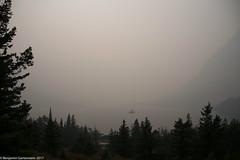 20170907-DSC_0161.jpg (bengartenstein) Tags: canada banff glacier nps glaciernps montana canada150 mountains moraine morainelake manyglacier lakelouise hiking fairmont