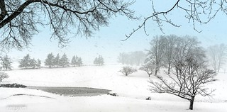 2018-03-07 Snow 06