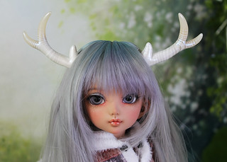 available antler set