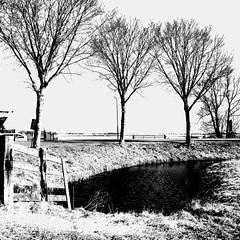 Road to the other world (CloudBuster) Tags: meadow weilanden groen green countryside platteland friesland water open view uitzicht farms boederijen shadows schaduwen black white zwart wit