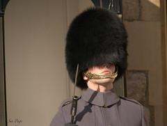 Extreme Concentration (suepage_mx) Tags: guard soldier tower london uniform sony portrait