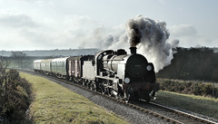 31806, Between Harmans Cross and Corfe Castle. (johncheckley) Tags: d90 uksteam locomotive steam uclass train
