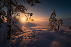 Misty Light (lonekheir) Tags: norge norway winter snow sun sunlight cabin trees forest lake cold mist misty fog