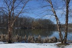 Springtime in the Bronx (Eddie C3) Tags: vancortlandtpark nycparks vancortlandtlake lakes newyorkcity bronx bronxnewyork