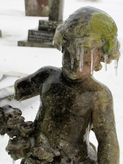 new hairstyle (devonpaul) Tags: budleigh ice icicle head cemetry