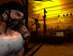 1000 Followers and 4 crows! Thank you! (ScottSilverdale) Tags: secondlife sl postapocalypse scottsilverdale tralalasdiner signature signaturegianni catwa argrace birth flitink meva theforge pinelake dirt dirty rust rusty decay crows corvus gasmask helmet likeabirdonthewire windturbine wires pole oldtincan recycle salvage destruction devastation dramaticsky clouds shadow shadows 1000followers