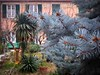 lavori in corso (fotomie2009) Tags: valleggia cortile courtyard facciata windows façade liguria italy italia ponente ligure