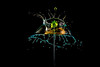 Tropfensession 210 (butchinsky) Tags: bavaria bayern butchinsky copyrightbyhelmutschmid dreiventile droplet drops fountainanordnung helmutschmid highspeed münchen rotorangeblau tropfenfotografie vierventile wasser wasserskulpturen wassertropfen wassertropfenfotografie waterdropart