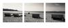impression (Bürger J) Tags: 1x1 square outdoor see lake sunny black white nikon d810